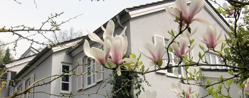 Stilvolles Einfamilienhaus in ruhiger, beliebter Wohnlage!
