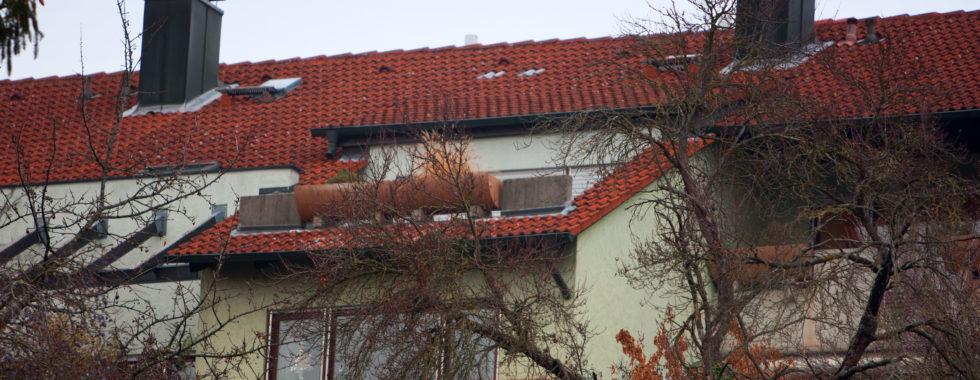 …über eine tolle Dachterrasse verfügt diese gemütliche Wohnung in ruhiger Lage